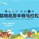 2020昆明高原国际半程马拉松赛(赛事延期)